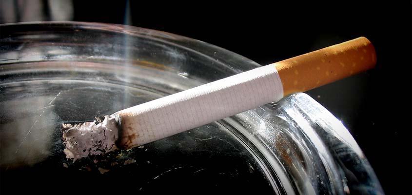 Ulja e duhanpirjes, OBSH vendos objektiva