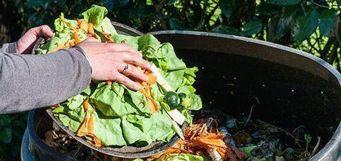 Bir milyar insan, gıda bulmak için göç ediyor ama gıda israfı giderek artıyor