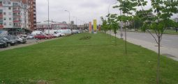 Kuvendi e miratoi ligjin për gjelbërim urban