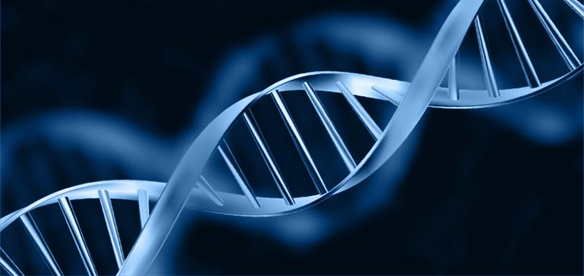 Is DNA Everything?