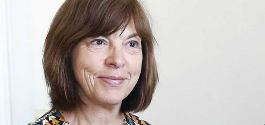 Harms calls on EU to grant Turkey purge victims political asylum