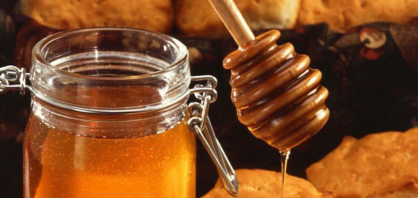 Antimicrobial Activity of Honey