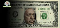 Dolar ve Egokrat