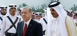 'Koskoca ülke ekonomisini elin Arap Emiri kurtarmaya çalışıyor'