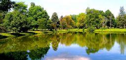Üsküp bulvar ve parklarda 65 bin ağaç bulunuyor..