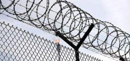 Freedom House Raporu: 'Türkiye' ile 'özgürlük' ayrı vadilerde