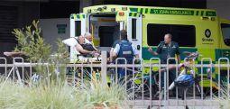 Sulmuesi në Zelandë të Re në vitin 2016 ka qëndruar në Greqi