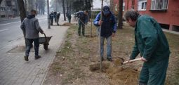 Shilegov: Këtë verë do të mbillen mbi 1.200 drunj në të gjithë komunat e Shkupit