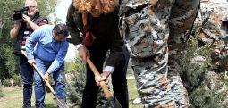 Засадени 150 садници кај воениот стадион на кејот на Вардар