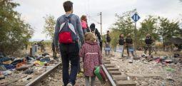 Над 300.000 бегалци добиле азил во ЕУ во 2018 година