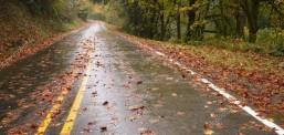 Есенска временска прогноза: Просечни температури и помалку врнежи