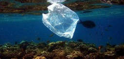 Fëmijët po i gëlltit plastika! Studimi më i fundit alarmon shkencëtarët