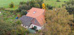 Burası Hollanda: Evin bodrum katında 9 yıldan beri 'dünyanın sonunu' bekleyen aile bulundu