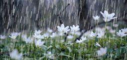 Nga nesër shi, bubullima dhe erë të fortë