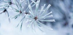 Më ftohtë në Berovë, 15 centimetra borë në Mavrovë