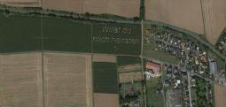 Alman çiftçinin ilginç evlilik teklifi Google haritalara yakalandı!