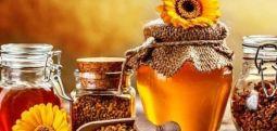 Studimi:: Mjaltë dhe rigon,  Kura që ju duhet për mbrojtjen e organizmit nga problemet shëndetësore