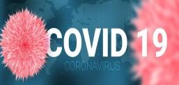 Rritet numri i të shëruarve nga Covid-19 në vend