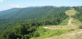 Environment ministry launches campaign to declare Osogovo Mountains a protected area