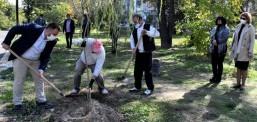 """Општина Кисела Вода во паркот """"Шопен"""" и по должината на трим патеката сади дрва"""