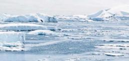 Истражување – Маорите го откриле Антарктикот најмалку 1.000 години пред Европејците!?