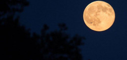 Sonte me sytë nga qielli, gjithçka që duhet të dini për Hënën e Gjuetarit
